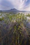 Озеро Batur Бали - Индонезия Стоковое Изображение RF