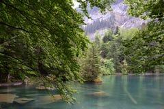 Озеро Blausee, Швейцария Стоковая Фотография