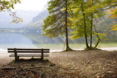 Озеро Bohinj, Словения Стоковые Изображения RF