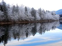Озеро 01 Bohinj Стоковое Изображение RF