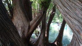 Озеро Camecuaro Стоковое фото RF