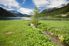 озеро champferer Стоковое Изображение RF