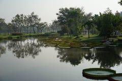 Озеро Clam monring стоковая фотография