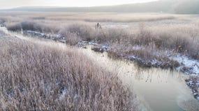 Озеро Comana в зиме стоковые фото