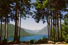 Озеро Cushman в лете стоковые фотографии rf