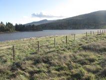 Озеро Cuyamaca Стоковые Изображения RF