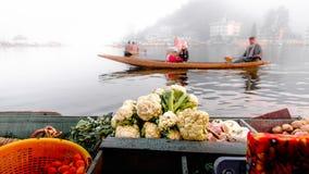 Озеро Dal озеро в Сринагаре, Кашмире, Индии Стоковое Изображение RF
