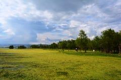 Озеро Dali Стоковые Изображения