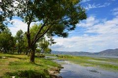 Озеро Dali Стоковые Изображения RF