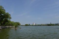 Озеро Daming в Jinan стоковая фотография
