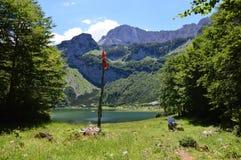 Озеро Dinaric Альпы Trnovacko в Черногории Стоковое фото RF