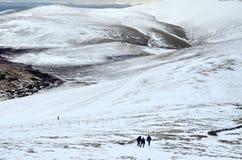 Озеро Distruct в зиме Стоковое фото RF