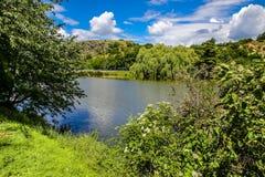 Озеро Dzban в одичалом Sarka - Праге, чехии Стоковое Фото