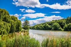 Озеро Dzban в одичалом Sarka - Праге, чехии Стоковые Изображения