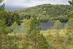 Озеро Eilein стоковое фото rf