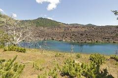 Озеро El Escorial и окаменелый лес, Чили Стоковое Изображение