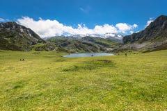 озеро ercina Cantabrian Covadonga astrological Испания стоковая фотография