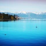 озеро geneva Стоковое фото RF