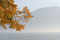 озеро geneva Стоковое Фото