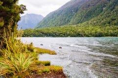 Озеро Gunn - национальный парк Fiordland стоковые изображения