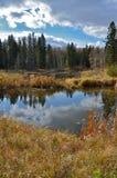 Озеро Hickey осенью на парке горы утки захолустном, Манитобе Стоковое Изображение