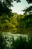 Озеро hidin воды Стоковые Фотографии RF