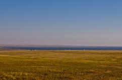 Озеро Hulun Стоковая Фотография RF