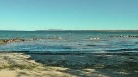 Озеро Huron, Онтарио, Канада сток-видео