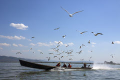 Озеро Inle - положение Шани - Мьянма Стоковые Изображения