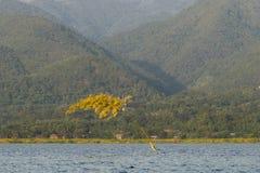 Озеро Inle Стоковая Фотография RF