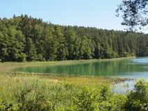 Озеро ius ¾ SpindÅ (Литва) Стоковое фото RF