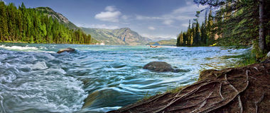 Озеро kanas Китая Синьцзян-Уйгурский автономный район Стоковые Фотографии RF