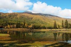 озеро kanas Стоковые Фото