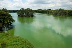 озеро karanji стоковые изображения rf