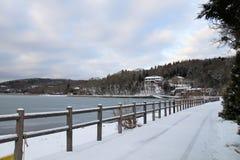 Озеро Kawaguchiko стоковые изображения rf