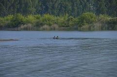 Озеро Kerkini на nord Греции Стоковое Изображение RF