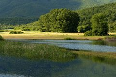 Озеро Kerkini на nord Греции Стоковое Фото