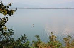 Озеро Kerkini Serres Греции стоковые фото