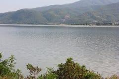 Озеро Kerkini Serres Греции стоковое фото rf