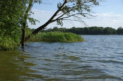 Озеро Kiekrz Стоковые Изображения RF
