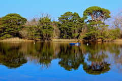 озеро killarney стоковые фотографии rf