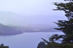 Озеро Lacar в Сан Мартине de los Андах, Патагонии Стоковые Изображения
