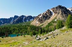 озеро ladyslipper Стоковое Фото