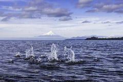 Озеро Llanquihue Стоковое Фото
