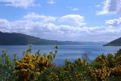 озеро Loch Ness Стоковое Изображение RF