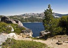 Озеро Loon Стоковая Фотография RF