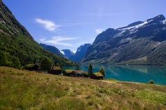 Озеро Lovatnet в Норвегии в Европе Стоковое Изображение RF