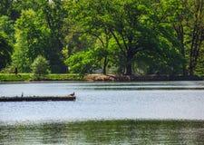 Озеро Maksimir парка в Zagreb Croatia Стоковые Фото
