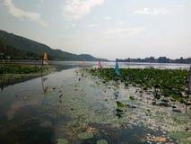 Озеро Mansbal стоковые фотографии rf