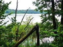Озеро Masurian Стоковое фото RF